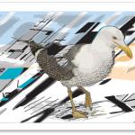 Tuesday - Gull